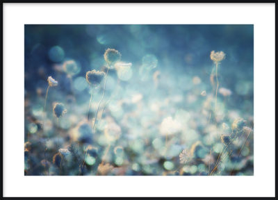 Flowers in Blue Poster